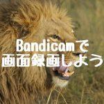 Bandicamで画面録画しよう!