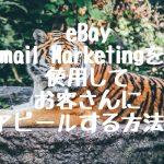 eBay Email Marketing を使用してお客さんにアピールする方法!